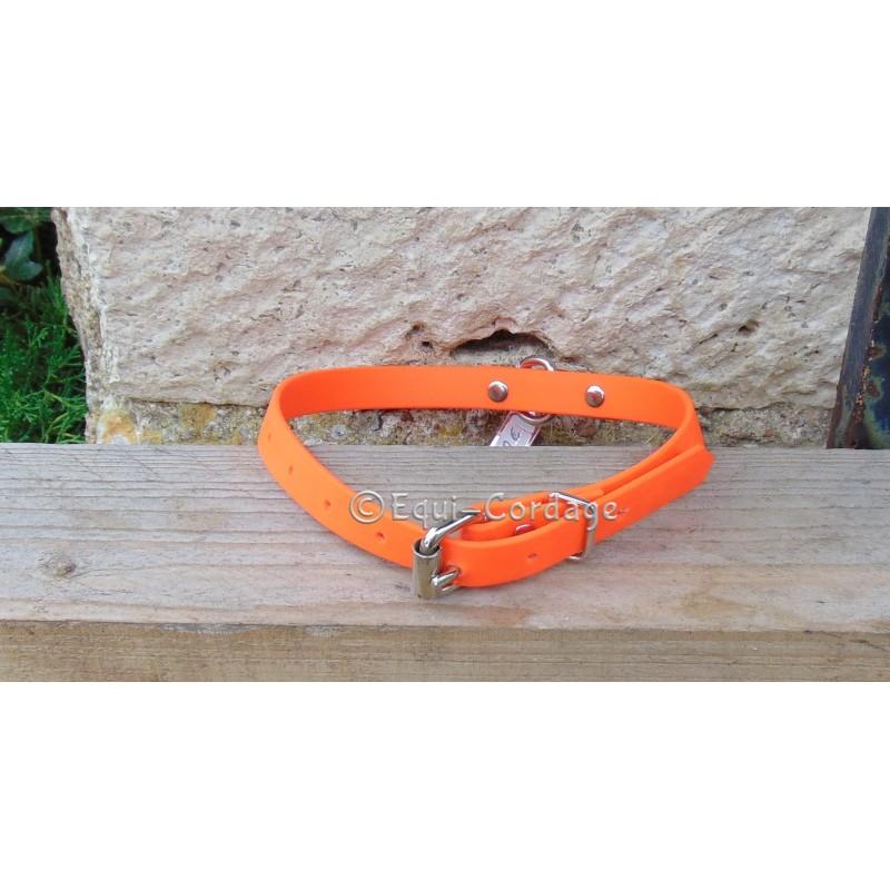 collier pour chien moyen