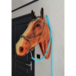 Ensemble étho poney
